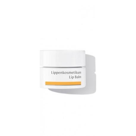 DR HAUSCHKA Lippenkosmetikum Lip Balm 4.5ml