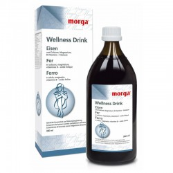 MORGA WELLNESS Drink Eisen 380 ml