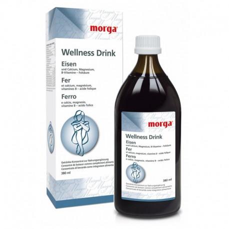 MORGA WELLNESS Drink Eisen 380 ml